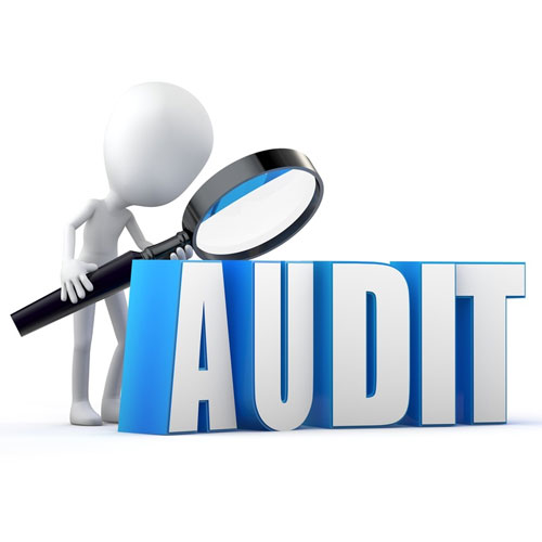 Audited Accounts of Subsidiary