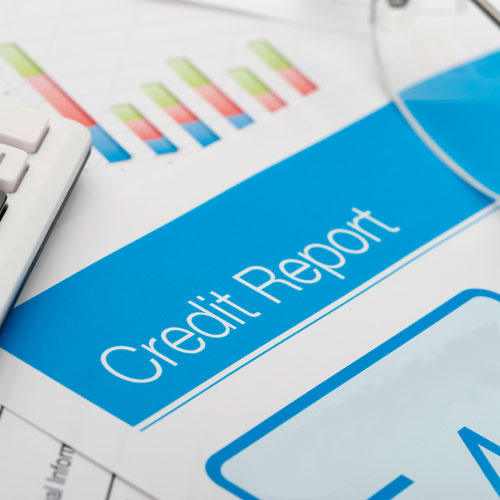 Credit Rating Reports