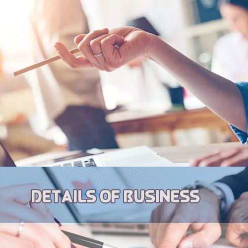 Details of Business